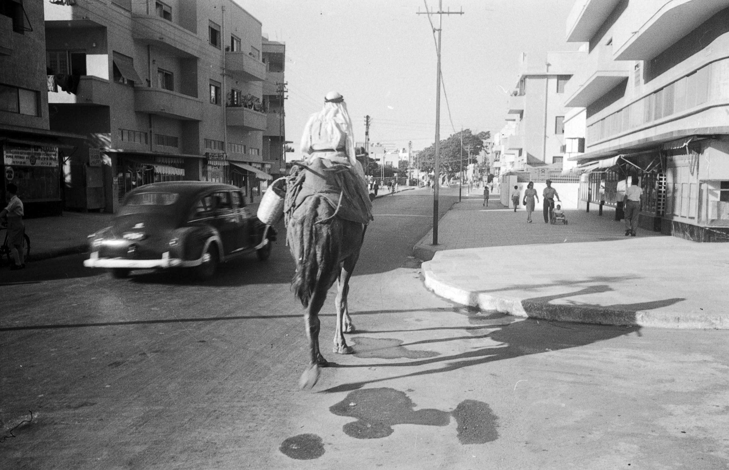 Schwarz-weiß-Aufnahme einer Straße mit Gebäuden aus den 30er Jahren. Ein auto fährt vorbei und überholt ein Kamel mit Reiter.