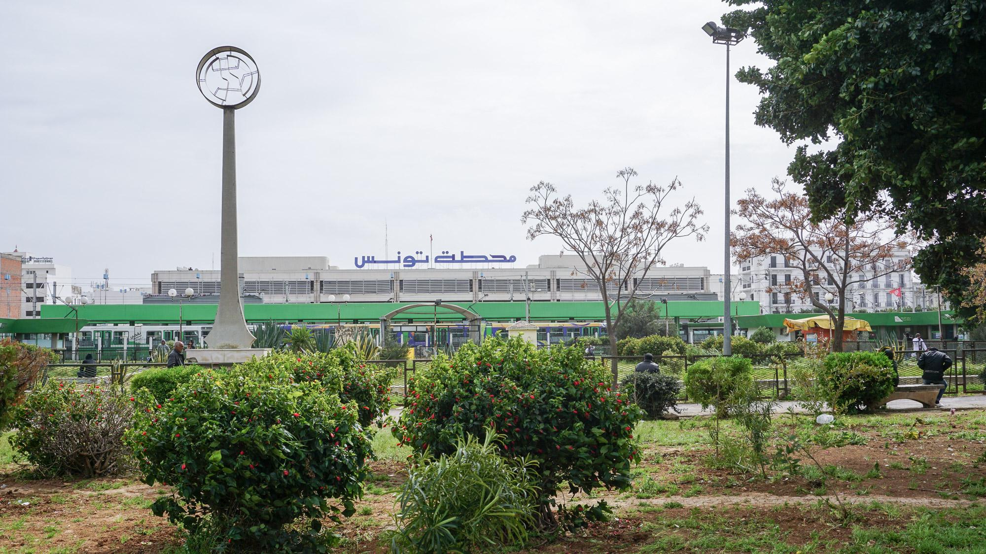 grüne Büsche, im Hintergrund der moderne Hauptbahnhof
