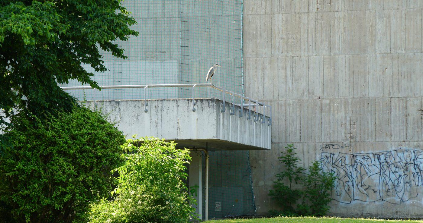Betonfassade mit Sicherheitsnetz, auf einem Geländer sitzt ein Reiher
